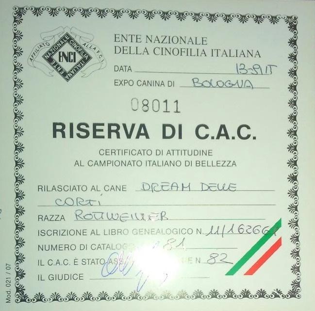 13/09/2015 Dream - Esposizione Bologna