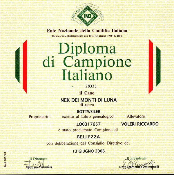 diploma nek 2006