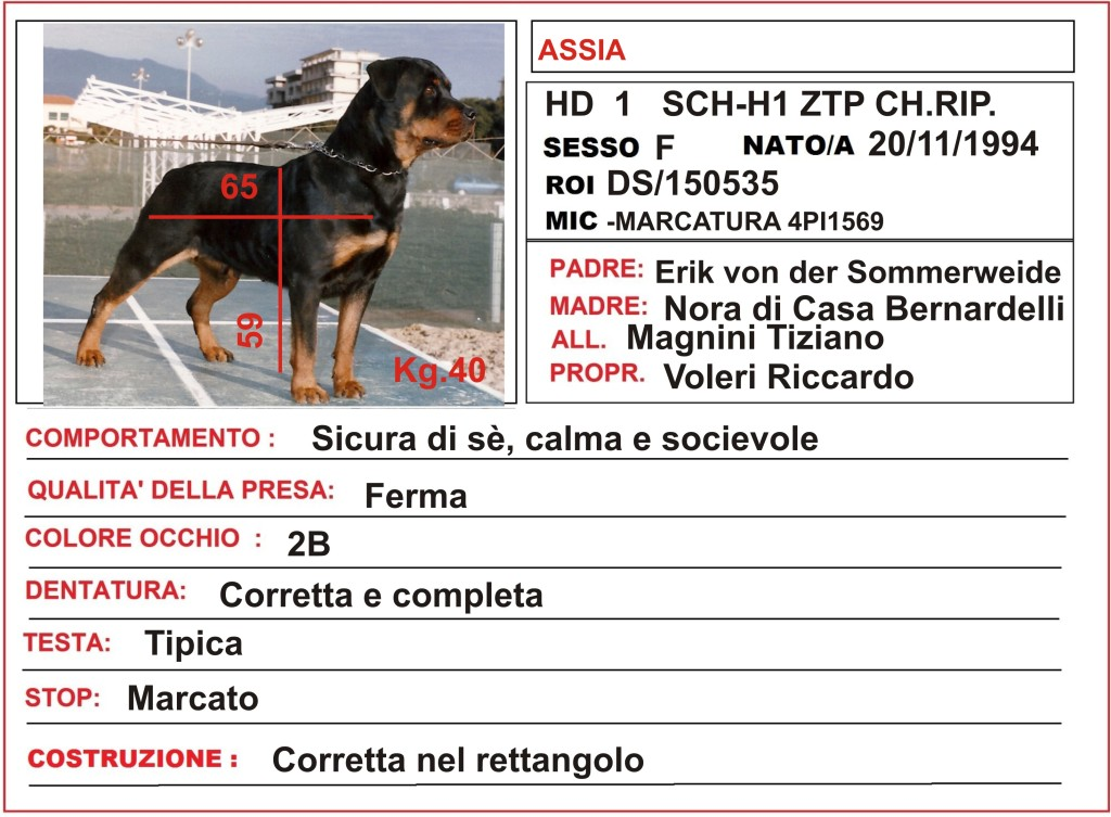 scheda Assia (2)