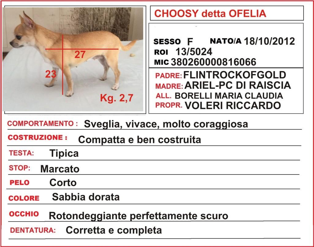 scheda Ofelia copleta jpg (1)
