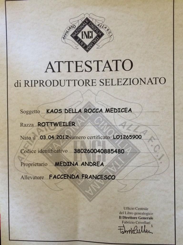 ATTESTATO KAOS (1)
