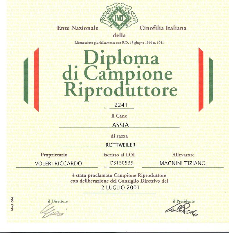 diploma di rip assia (1)